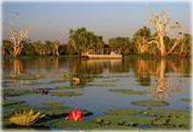 Экскурсия в Национальный парк Какаду, круиз по реке Billabong