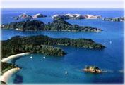 Экскурсия переезд из Окленда в Залив островов