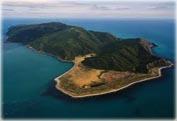 Экскурсия на остров Капити