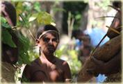 Экскурсия вокруг острова Эфату (Efate) на целый день