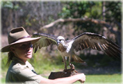Экскурсия в Парк животных Северных Територий Австралии