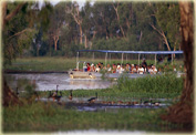 Экскурсия из парка Какаду